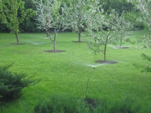 Системы полива для сада